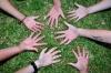 A közép-európai társadalmak jobb működésének előmozdítására Duna Kollégium elnevezésű oktatási hálózat életre hívására indult civil szerveződés a Budapesten