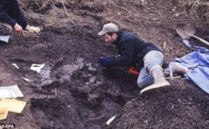 Egy új, mini dinoszauruszfaj maradványait tárták fel Alaszkában
