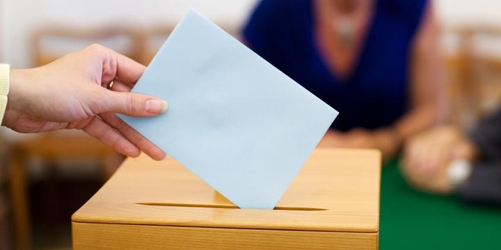 online választói orientációs program