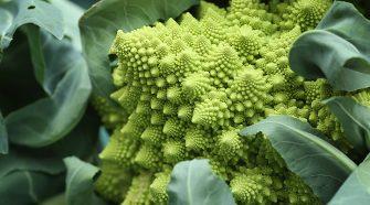 A mediterrán étrend vérnyomáscsökkentő hatása abban áll egy brit kutatás szerint, hogy a telítetlen zsírsavak és a nitritben gazdag zöldségfélék együtt védenek a magas vérnyomástól.