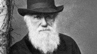 """Darwin """"kölcsönvette"""" a természetes szelekció elméletet egy kriminológus szerint"""