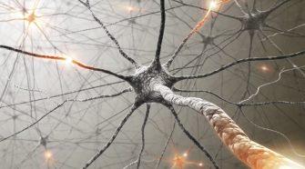 A fájdalom olyan élettani védekező mechanizmus, amely valamilyen károsító hatásra alakul ki.