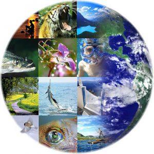 Biodiverzitás - magyarok kulcsszerepben