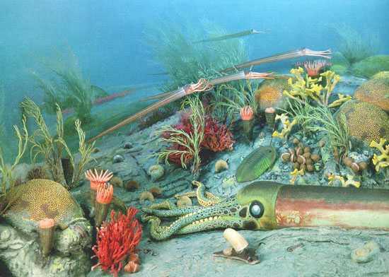 Egy nemzetközi tudóscsoport új bizonyítékot talált a Spitzbergákon arra, hogy a közép-perm földtörténeti korban a Föld élővilágában bekövetkezett egy hatodik tömeges kihalási esemény.