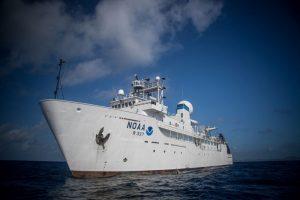 Különleges mélytengeri élőlények - Okeanos Explorer kutatóhajó