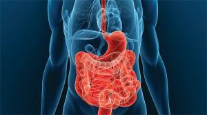 Mi is az a Crohn-betegség? I.