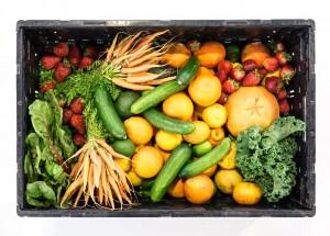 Kormányzatilag reformálják meg étkezésünket
