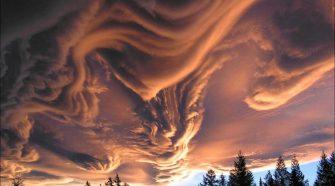 Elképesztő fényképek