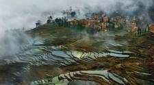 a világ legrégebbi rizsföldje