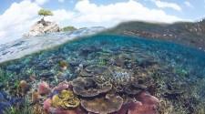Egymillió hektáros tengeri park Malajziában