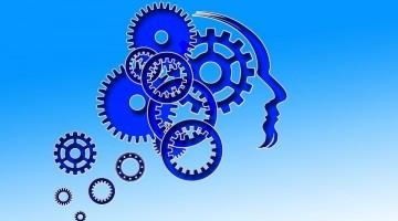 Mi folyik az agyunkban?