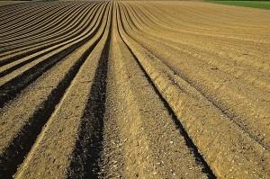 Talajminőség-kutató kiválósági központ
