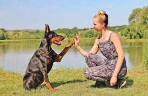 Empatikusabb emberek empatikusabb kutyákkal