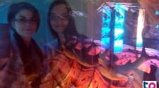 A bűvös óceán kiállítás még a szakembereket is megbűvölte.
