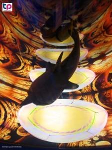 A bűvös óceán kiállítás harmadik állomása a múlt rejtélyeibe enged bepillantást.