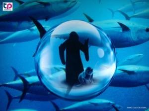 A bűvös óceán kiállítás egyik főszerepében a ravasz és gonosz professzor került, akinek számtalan terve bajba sodorta az óceán állatait.