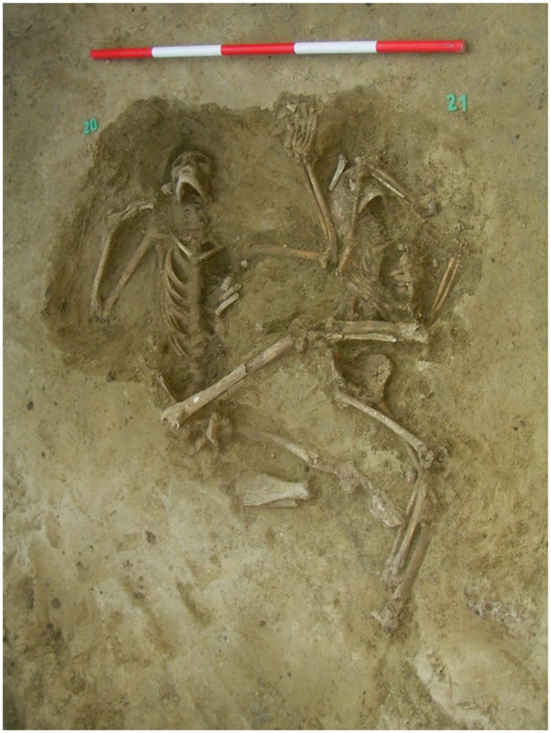 1. kép: Az egyik gödörbe bedobott fiatal férfi a hátán feküdt (257. objektum S20) (Forrás: Köhler et al. 2017 – Fig 6).