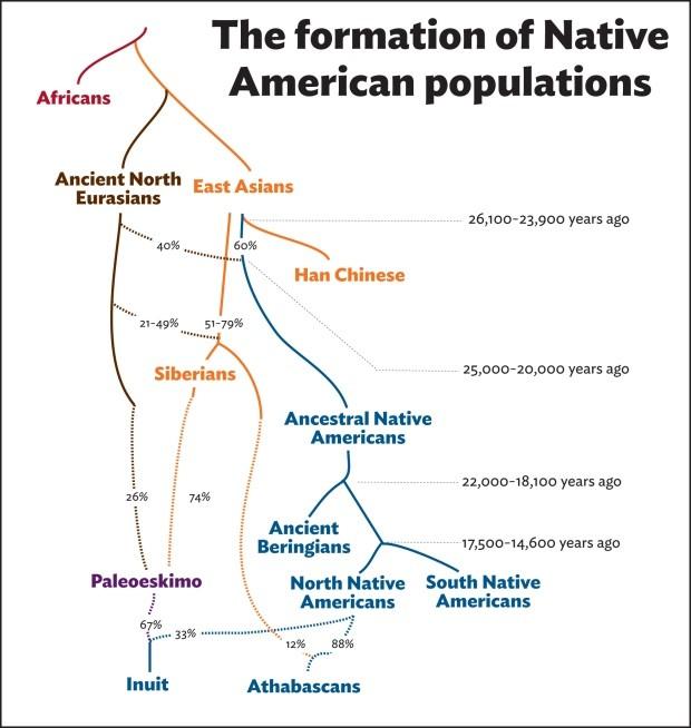 Ebből a továbbvándorló csoportból alakult ki az a két genetikai csoport, amelyeket a mai őslakos populáció elődeiként tartanak számon.