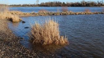 Rejtett vízszennyeződések megfigyelésére alkalmas eszköz