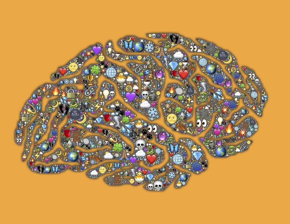Az agy teljesen másképpen tanul, mint gondolták - TUDOMÁNYPLÁZA