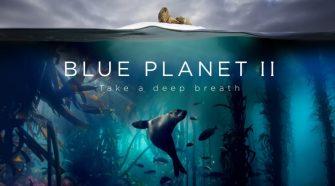 A kék bolygó II. az M5 műsorán