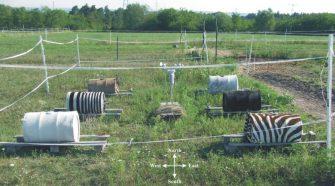 2016 és 2017 nyarán egy gödi lovas tanyán folytatott több hónapos terepkísérletben (1. ábra) Horváth Gábor és kutatócsoportja vizsgálta lovak, szarvasmarhák és zebrák testének termodinamikai modelljeit: 60 literes, vízzel töltött fémhordókat vontak be fekete, fehér és szürke lovak és szarvasmarhák kikészített bőrével, valamint egy-egy mesterséges (fekete és fehér marhabőrcsíkokból összevart) csíkos és valódi zebrabőrrel.