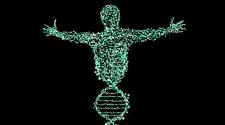 Információk a nem-kódoló DNS-ről - TUDOMÁNYPLÁZA
