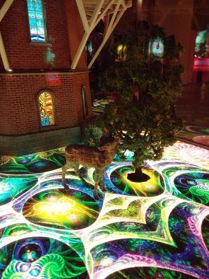 Mágikus kalandra hív a Bűvös Erdő interaktív kiállítás - Rejtőzködő őrszemek