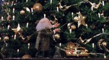 Varázsolj karácsonyt!