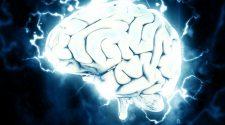 Időskori demencia - A Magyar Tudományos Akadémia (MTA) Természettudományi Kutatóközpontjának (TTK) munkatársai a kóros agyi öregedés mesterséges intelligenciával történő hatékonyabb előrejelzésében értek el fontos előrelépést. A Nemzeti Agykutatási Program által támogatott vizsgálat eredményeiről a GigaScience című tudományos folyóiratban számoltak be a TTK Agyi Képalkotó Központ kutatói.