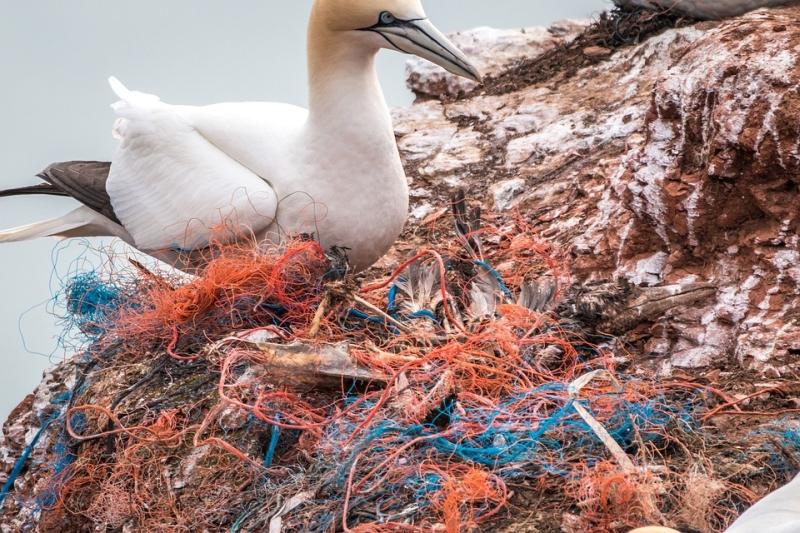 A műanyag hulladék felszámolása az óceánokban