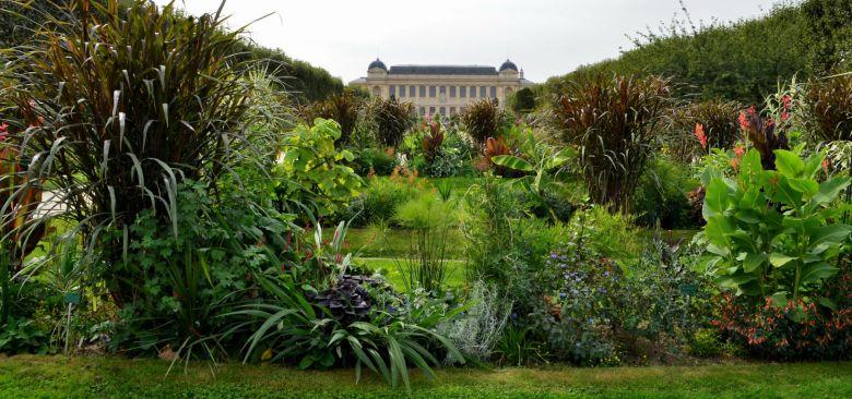 Jardin des plantes, Lamarck munkahelye.