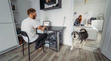 Idegesítő-e a kutyaugatás?