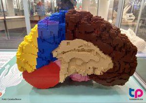 Lego agy - Tudománypláza