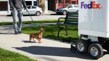 A FedEx SameDay elnevezésű robotja megoldást jelent az online rendelt termékek aznapi házhoz szállítására.