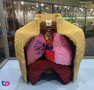 Lego tüdő - Tudománypláza
