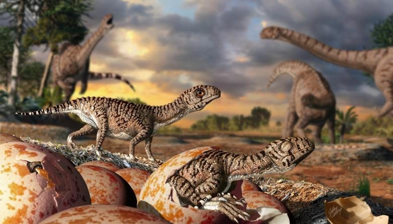 Tojásokból kikelő Massospondylus fiókák a fészekben, háttérben a szülőállatokkal. Illusztrációt készítette: Julius T. Csotonyi