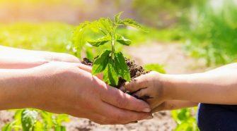 Az öko- és biocímke és a környezetbarát termékjelzés azonos fogalmak.