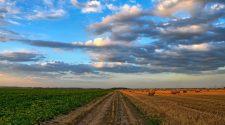 Diverfarming - Új mezőgazdasági módszer