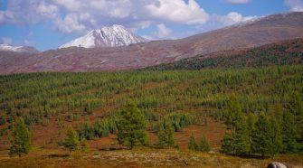 Oroszországnak előnyös lehet a globális felmelegedés