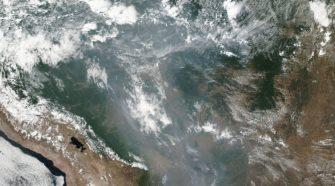 Amazonas lángoló esőerdők