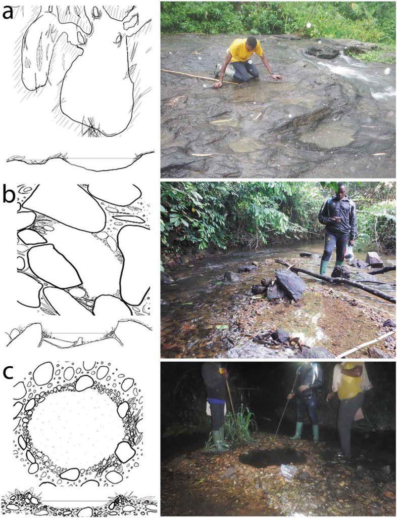 Ám Kamerun nyugati részén, a Mpoula folyó 400 méteres szakaszán, a terepmunka során furcsa látványra lettek figyelmesek a kutatók. Üres mélyedéseket találtak a parti sziklákban, amelyek mentesek voltak levelektől, kavicstól és más törmeléktől.