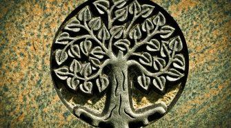 Az élet korallja - az élet fája