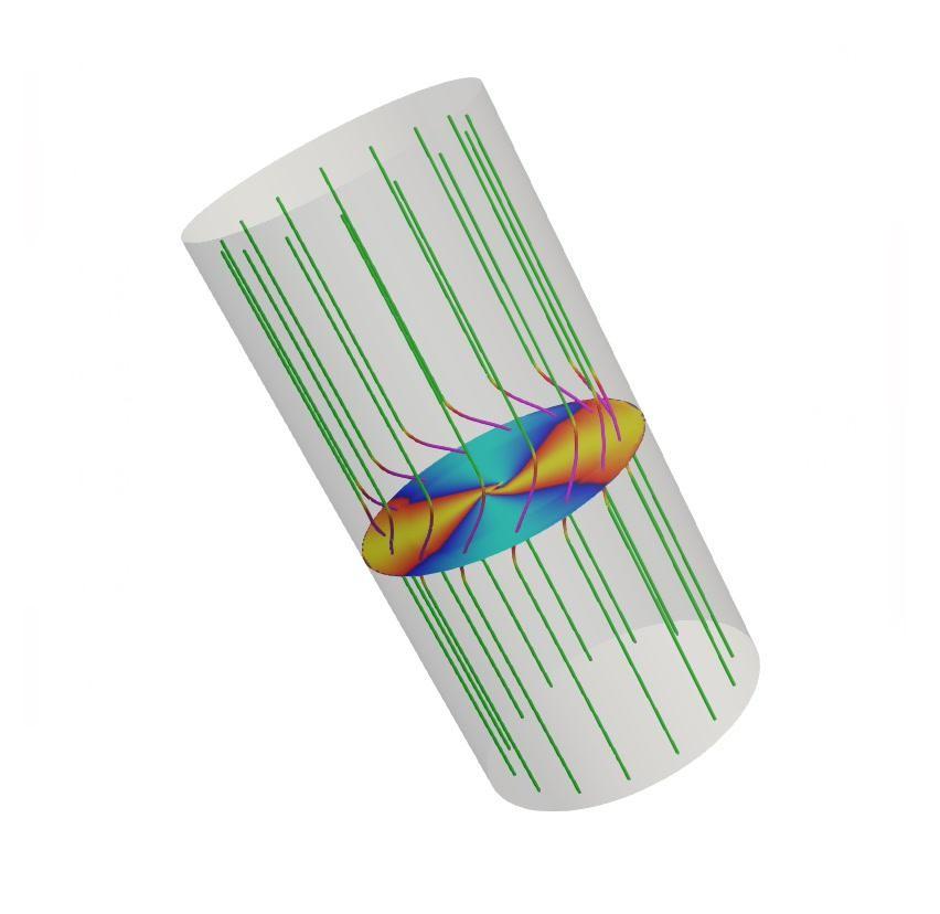 A Liu és mtsai (Nature Communications, 10:3504, 2019) által közölt cikkhez tartozó kiegészítő anyagban szereplő modell illusztrációja. A szürke henger egy mágneses fluxuscsövet jelenít meg, a zöld vonalak pedig a mágneses tér erővonalait jelölik. Az erővonalak lilára színezett szakaszai a fluxuscsőben haladó Alfvén-pulzus helyét emelik ki. A középen látható korong különböző színei a plazma eltérő helyi sűrűségét jelenítik meg. Az ábra azt mutatja be, hogyan jelenik meg egy mágneses Alfvén plazmapulzus a megfigyelt kromoszférikus örvények formájában. Az ábra animált változata online elérhető. Forrás: Liu és mtsai, Nature Communications, 10:3504, 2019