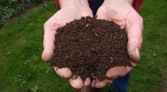 Klímabarát kertész – Útmutató a globális felmelegedés elleni küzdelemhez
