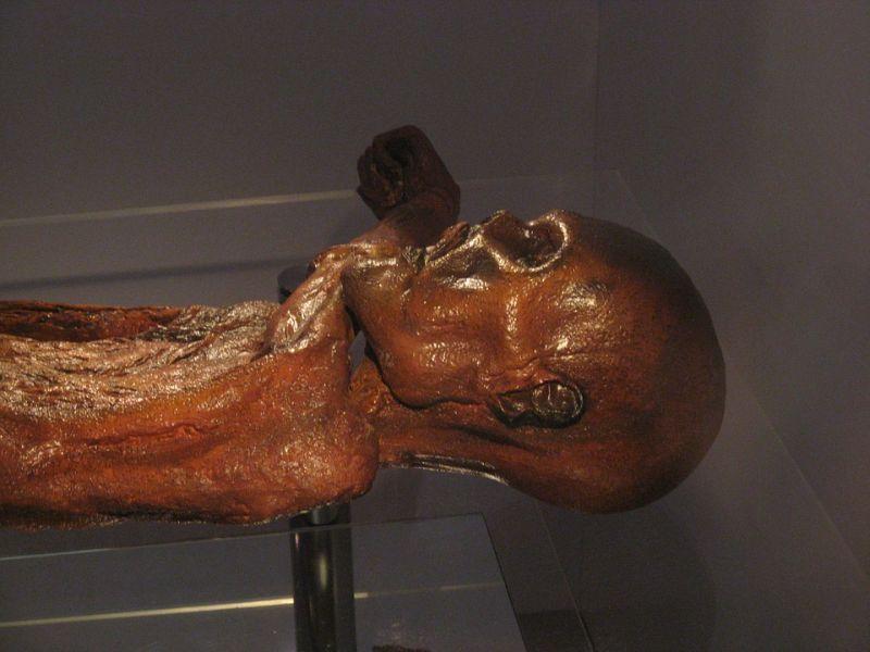 Merre vezetett Ötzi, az ősember utolsó útja?