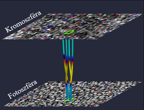 A pulzusok ily módon egészen a kromoszféra (a fotoszféra feletti rétege a Nap légkörének) tetejéig vagy akár még feljebb juthatnak a Nap koronájába.