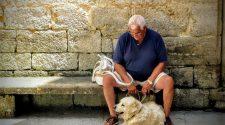 A kutyáknál is létezik időskori szelektív hallás