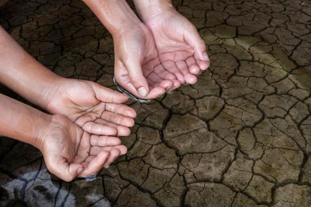 A nyugati világban a mezőgazdaság, a 3. világban a textilipar szennyező anyagait képes kiszűrni az édesvizekből egy új víztisztító berendezés.