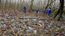 Tisza - Zajlik a Natura 2000-es ártéri erdőterület megtisztítása